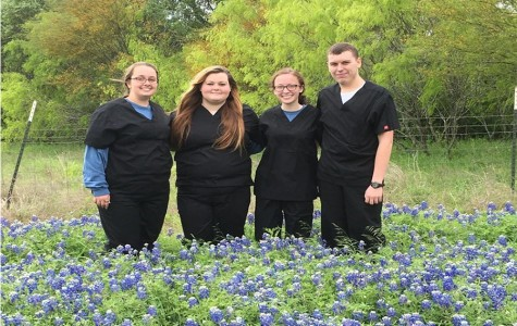 Vet tech team advances to State