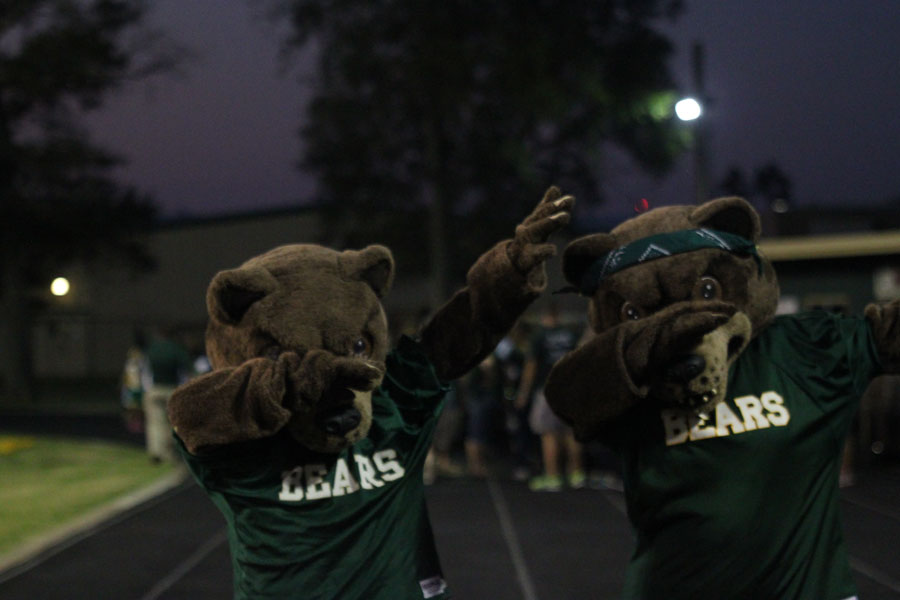 This is just a small amount of the fun that the LCM mascots bring to games.
