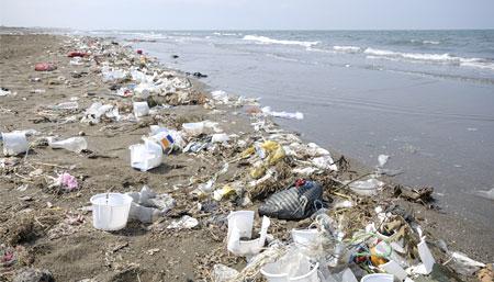Long live clean beaches