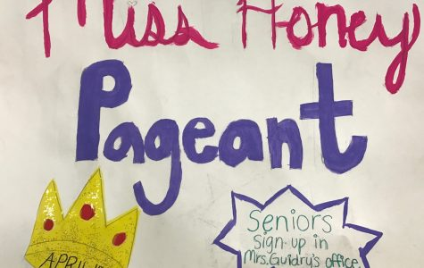 Seniors to compete for title of Miss Honey