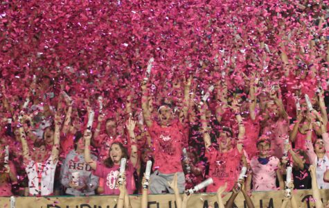 Bears show support with Pink Out game