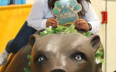 Bear of the Week: Nyah Patel